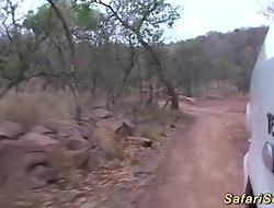 real african safari copulation street