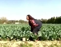 Funny mallu video